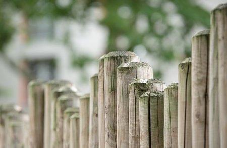 Забор для любимой дачи