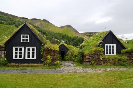 Озеленение крыш и стен