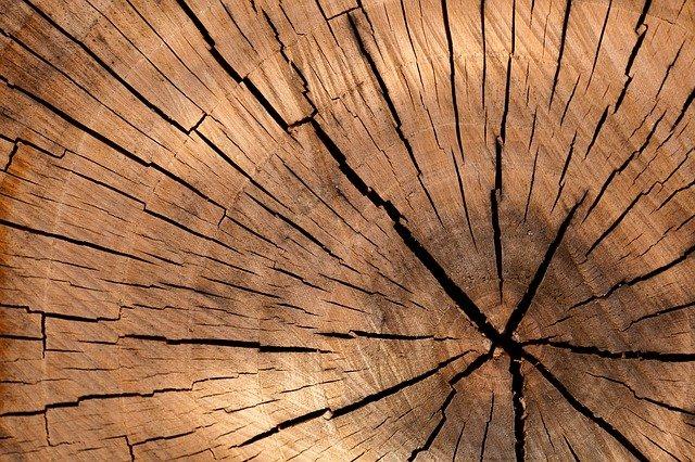 Как выбирать строительный материал из дерева